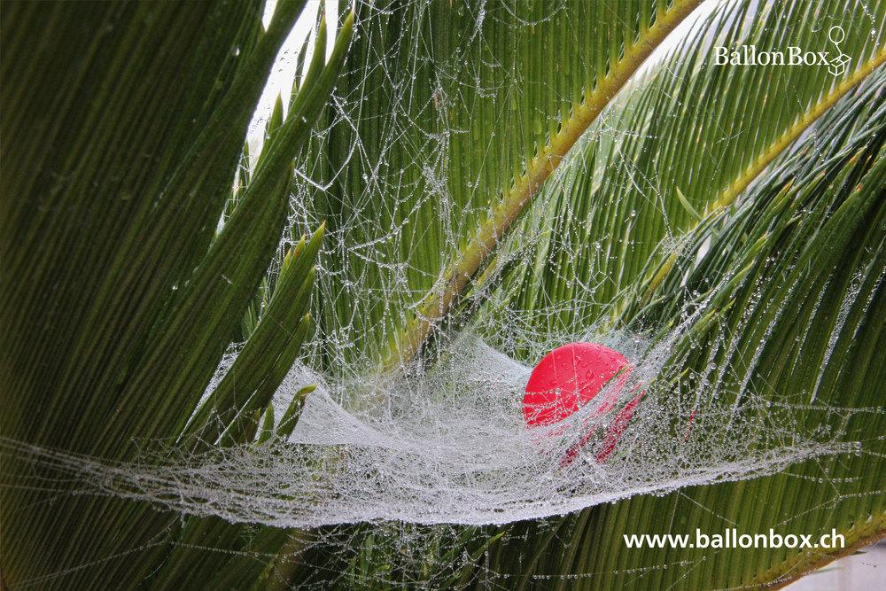 BallonBox_Kalender_18_10.jpg
