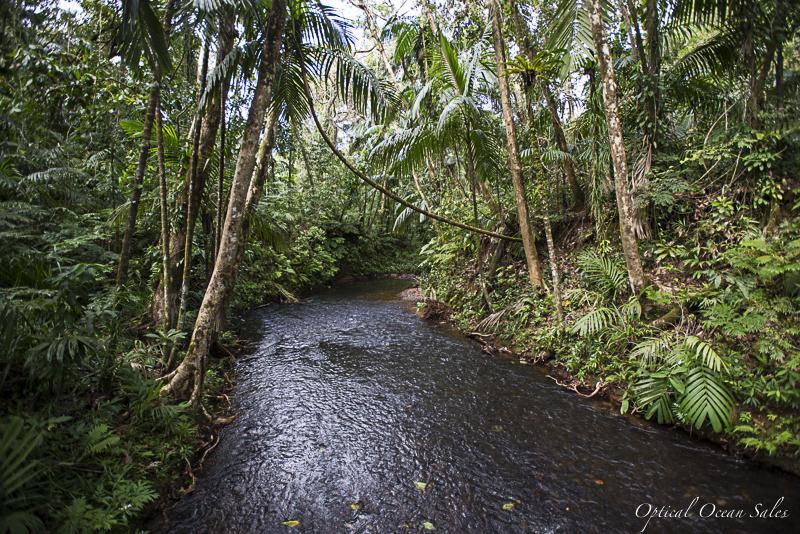 Palau-Land-4.jpg