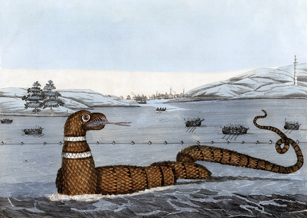"""They told me of a sea serpent, or snake, that lay quoiled [sic] up like a cable upon the rock at Cape Ann; a boat passing by with English on board, and two Indians, they would have shot the serpent, but the Indians dissuaded them, saying that if he were not killed outright, they would all be in danger of their lives."" —John Josselyn, 1638"
