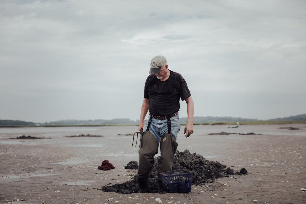 Charlie McNeil digs for clams at low tide in the Essex River. (Photograph by Matt Kalinowski)