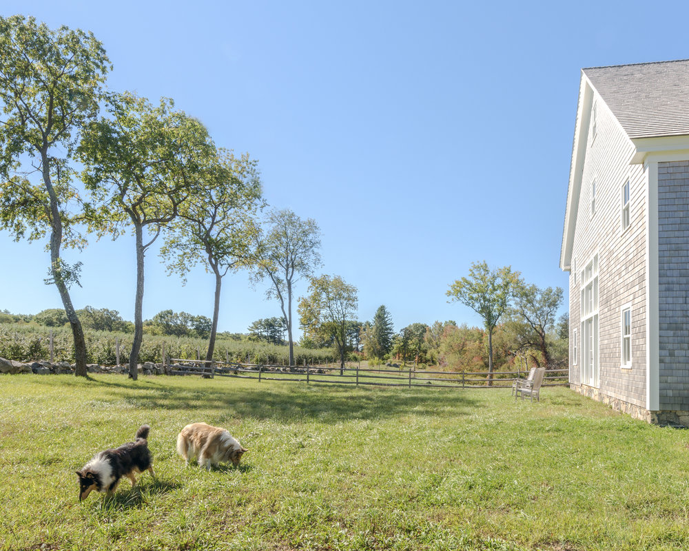 The Borgmans' farm is surrounded by 150 acres of orchards. (Photograph by Nicole Whitten)