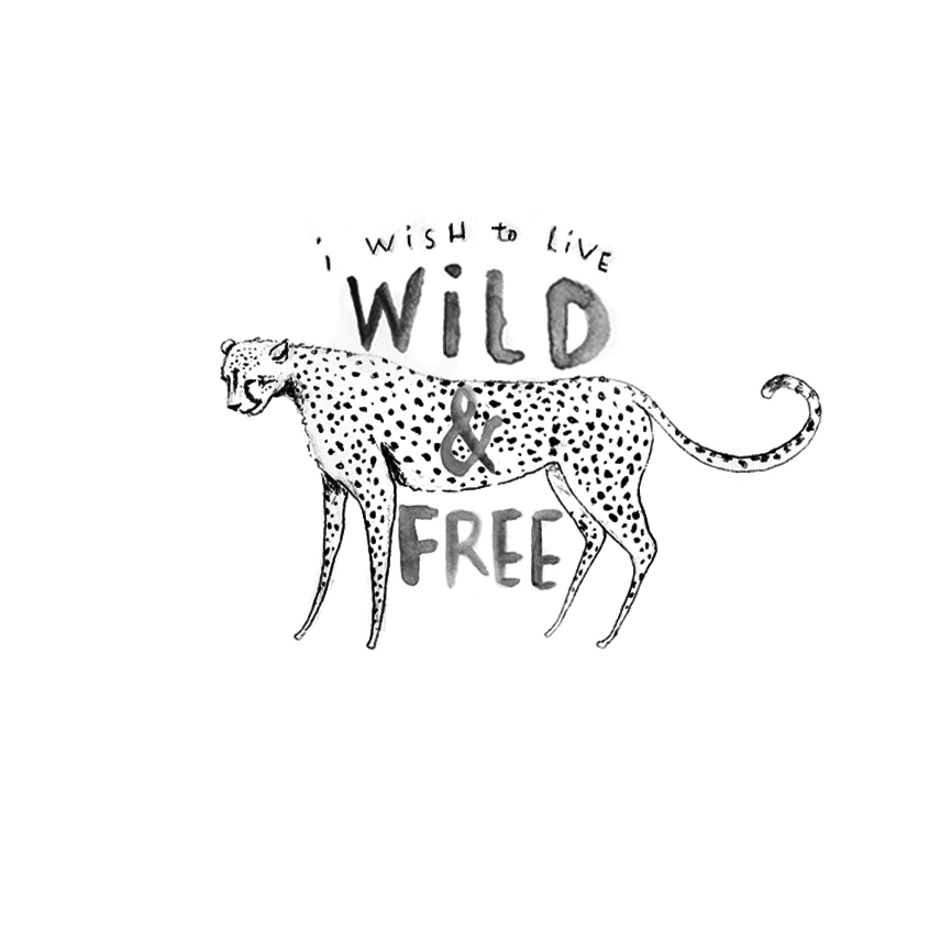 wild&free.jpg