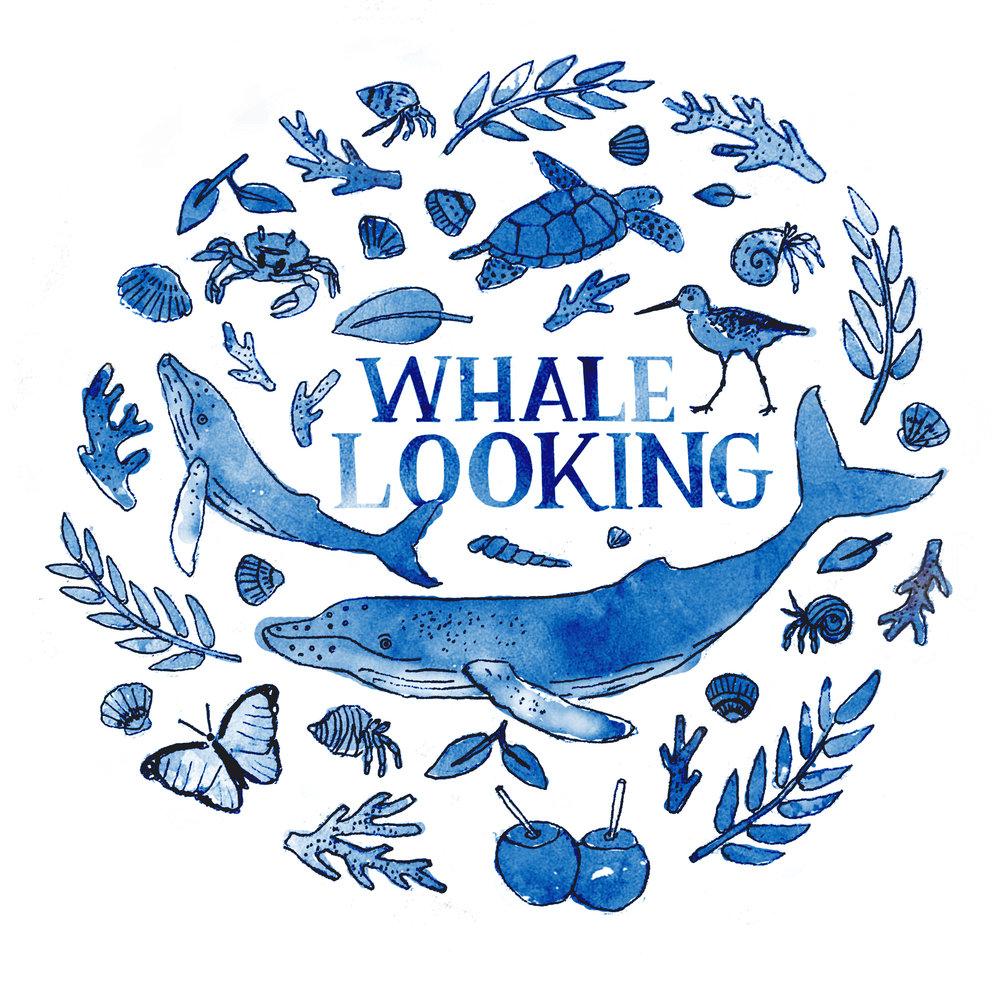 Whale-Looking.jpg