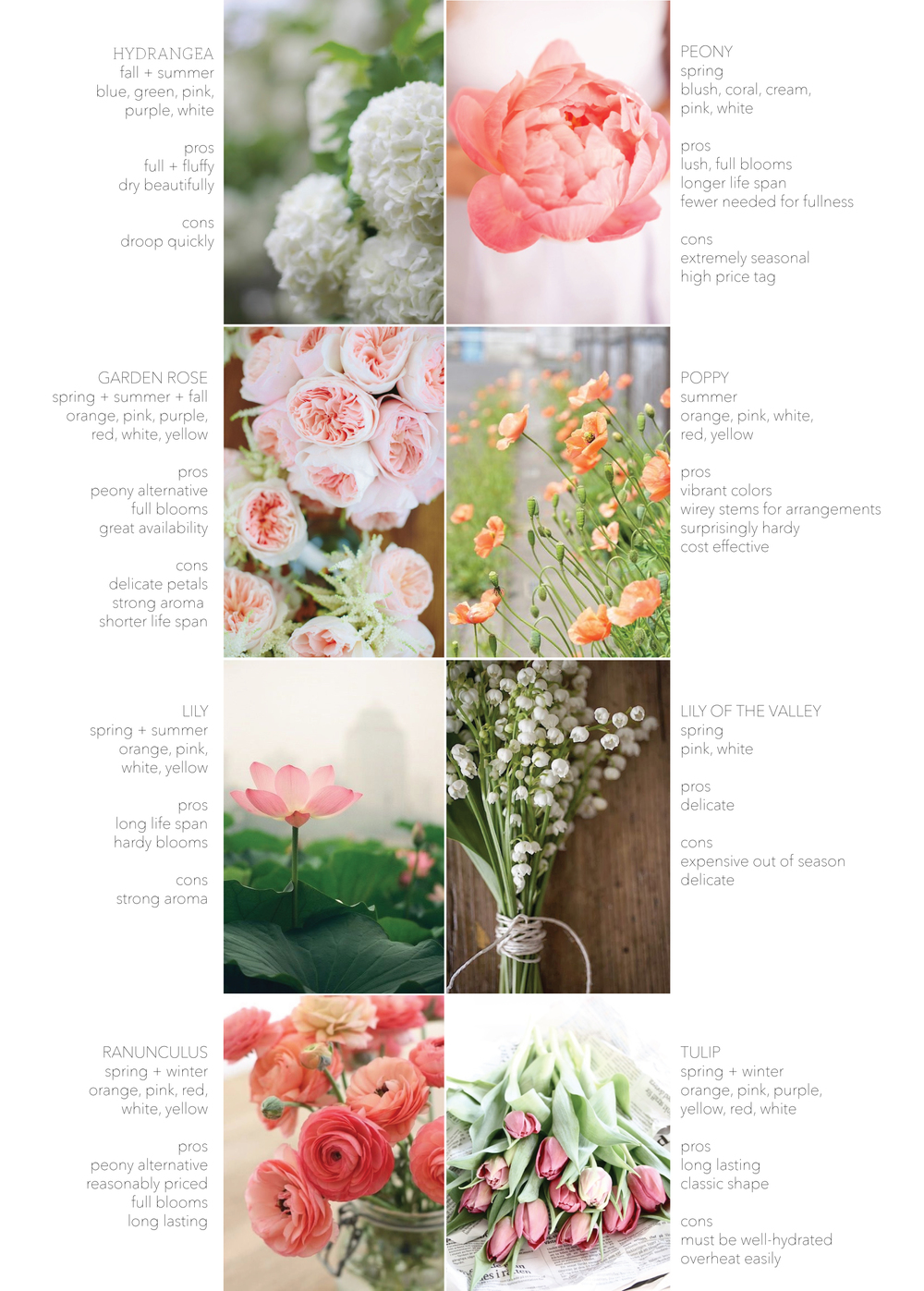 hydrangea, peony, garden rose, poppy, lily, lily of the valley, ranunculus, tulip