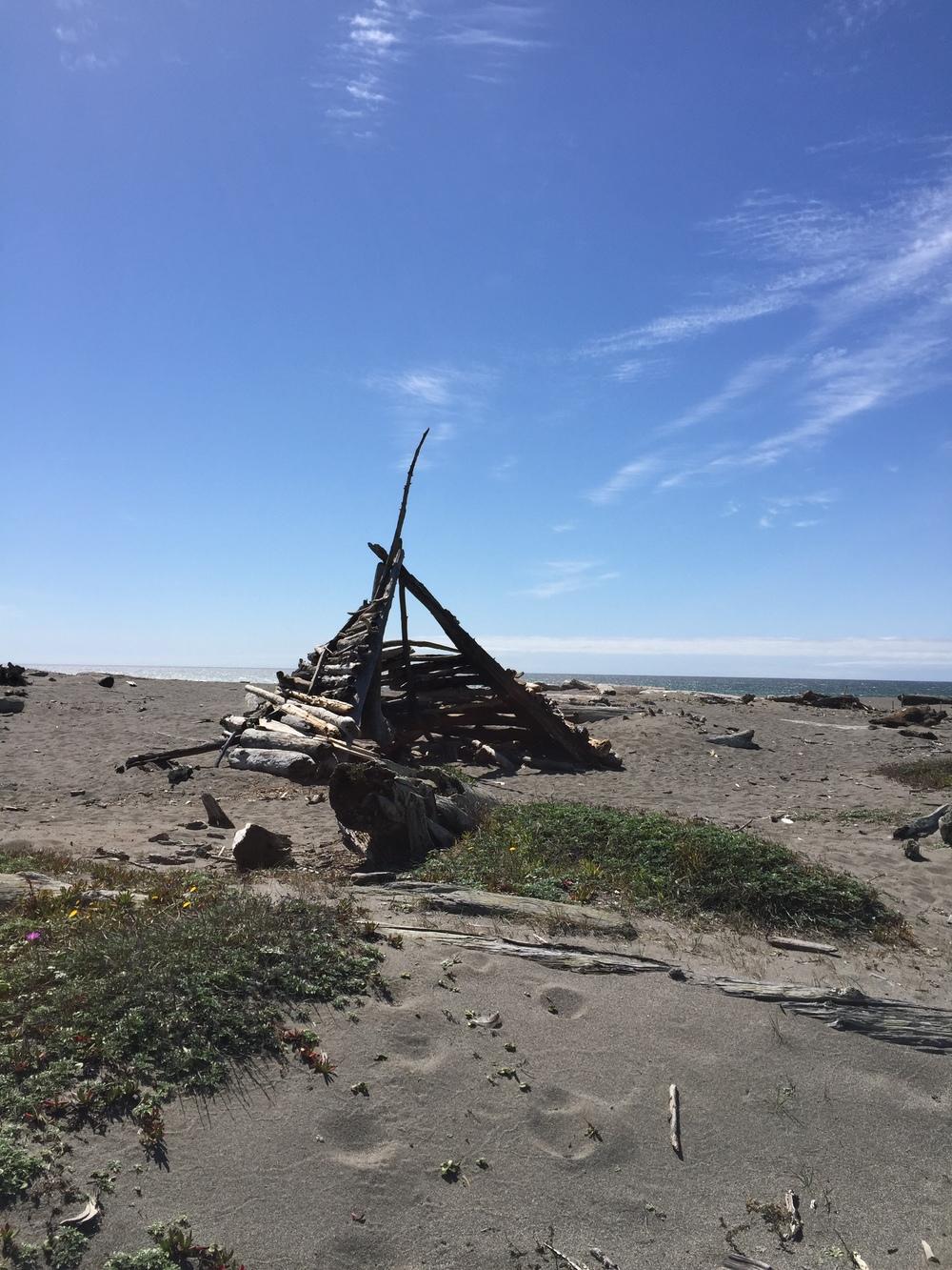 Driftwood sculpture on the beach