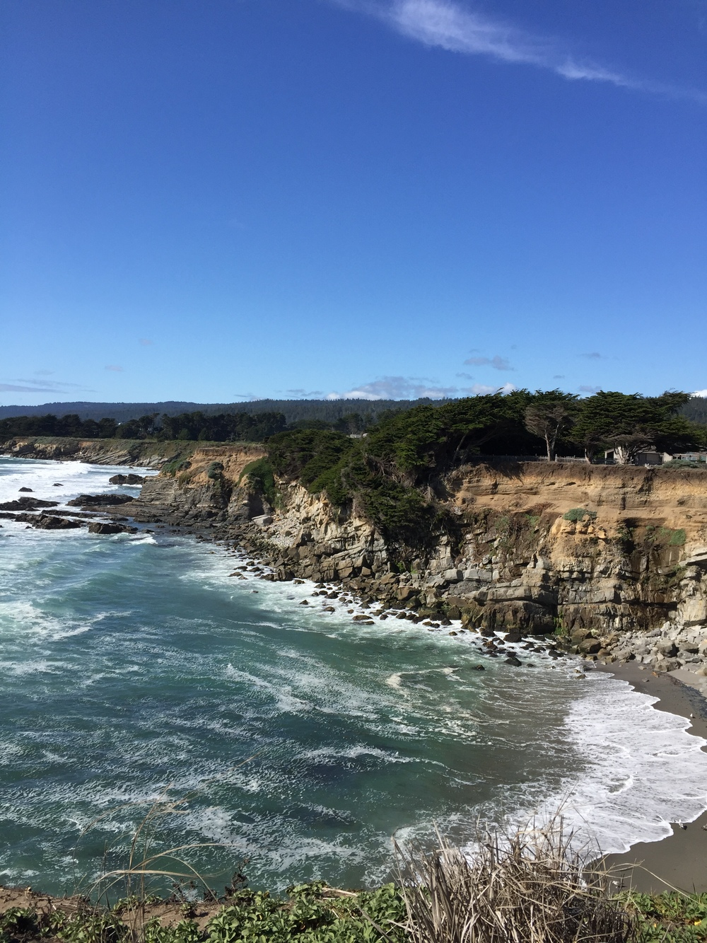 View from the Bluff Trail in Sea Ranch