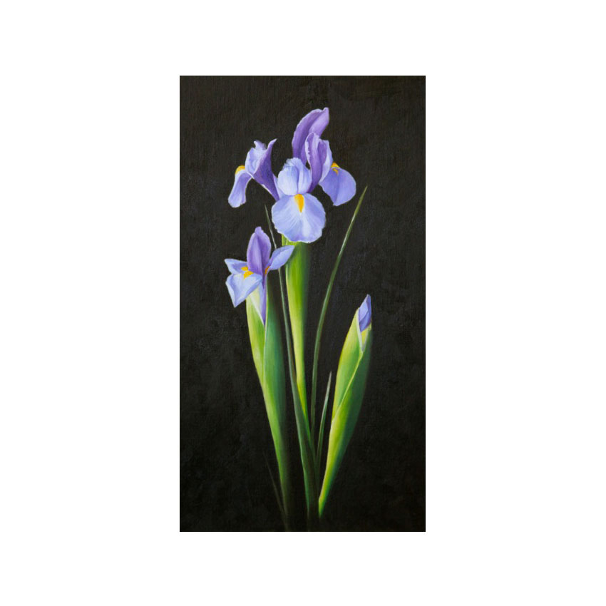 Irises - Original Available