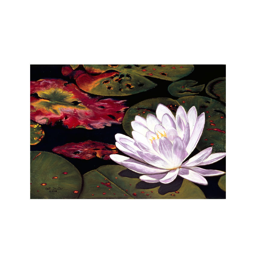 Water Lilly - Original Available