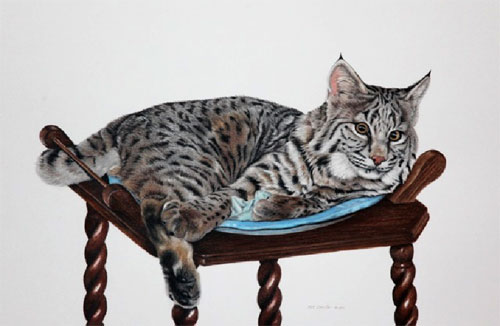 Commissioned Artwork of Family Cat