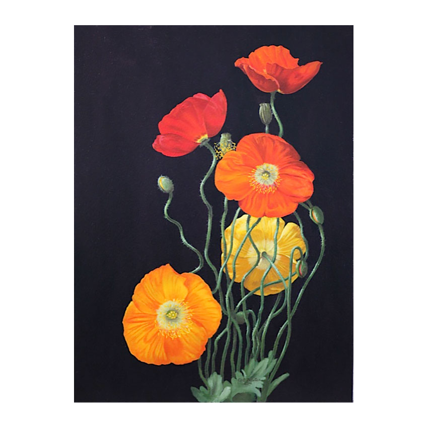 """Icelandic Poppies""  -  Available"