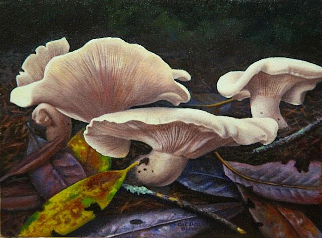 oregon-oysters_1.jpg