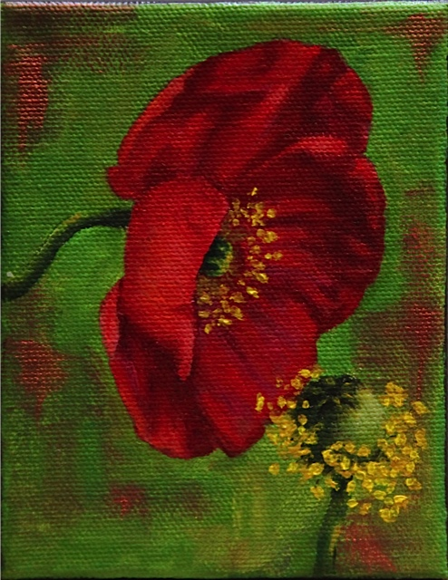 "Red Icelandic Poppy 5"" x 4"" oil on canvas"