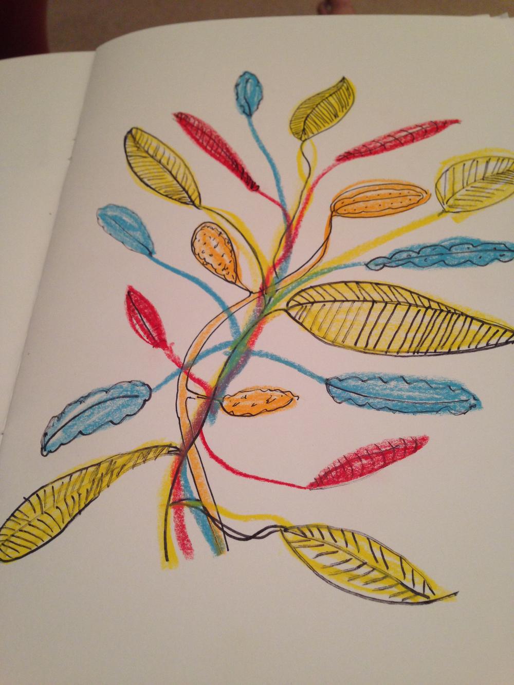 sketching-plant.jpg