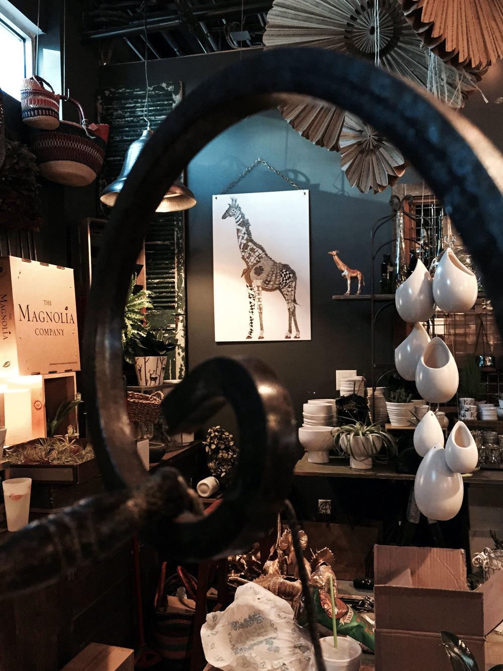 Giraffe-at-Porch-Therapy-2.jpg