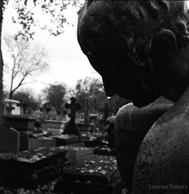 Went toPère Lachaise Cemetery, the rain formed a tear at the end of the nose.