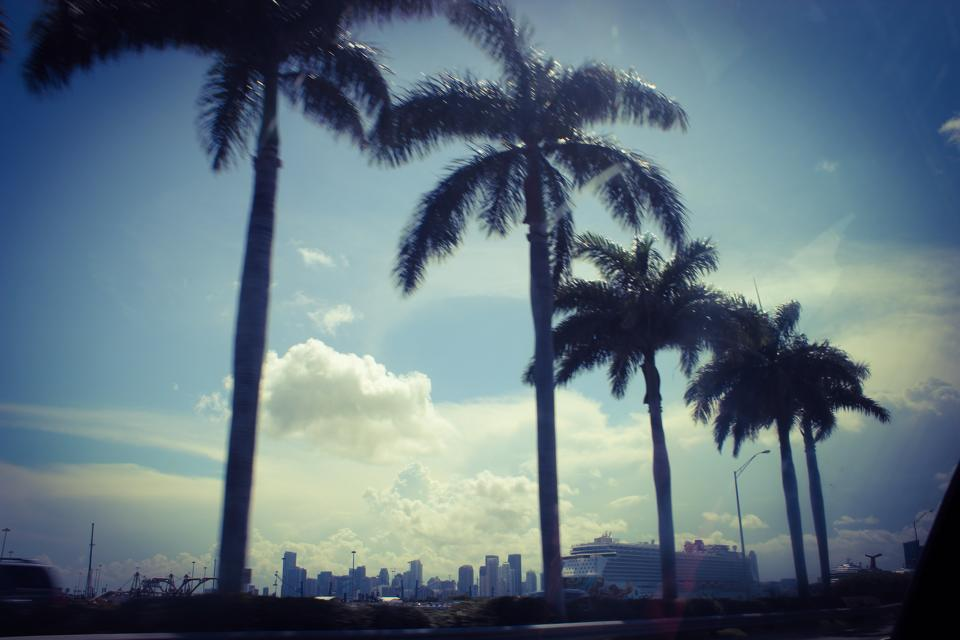 Miami, Florida: art deco and excited people. glad I could finally check off having seen Miami. a very dynamic city