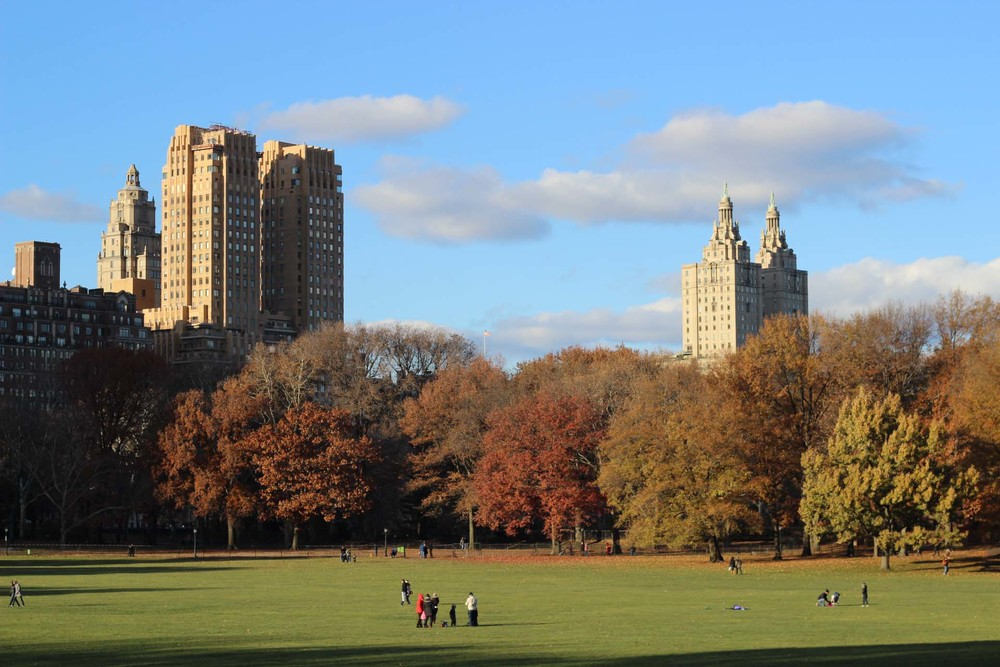 Central Park is always my favorite part of visiting New York. If it weren't for the freezing temperatures we  would've explored further, but  nonetheless we  managed to snap a few pictures before turning around to head back. [Above: Sheep Meadow]