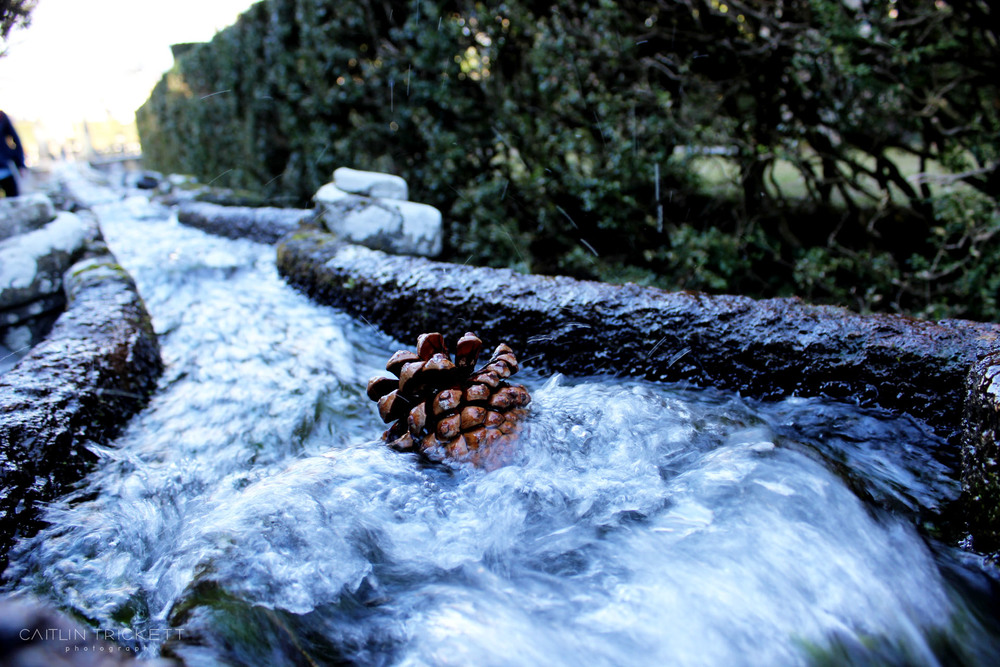 ^ Trying to send a pinecone down the water luge. It seems wrong but I definitely compared this to the log ride at Silver Dollar City. Sorry Italy!