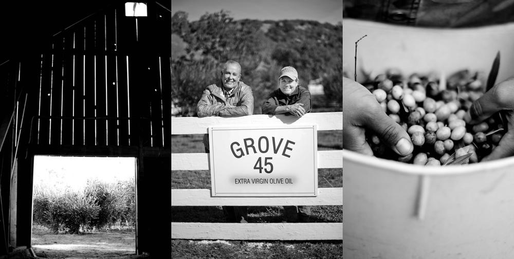 Grove45_Process.jpg