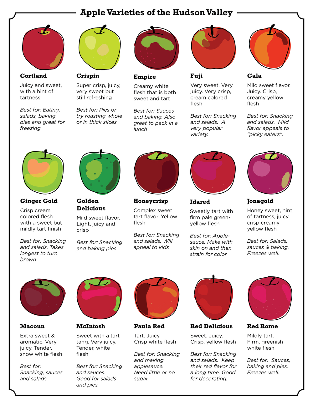 In Season: Hudson Valley Apples | SavoryPantryBlog.com