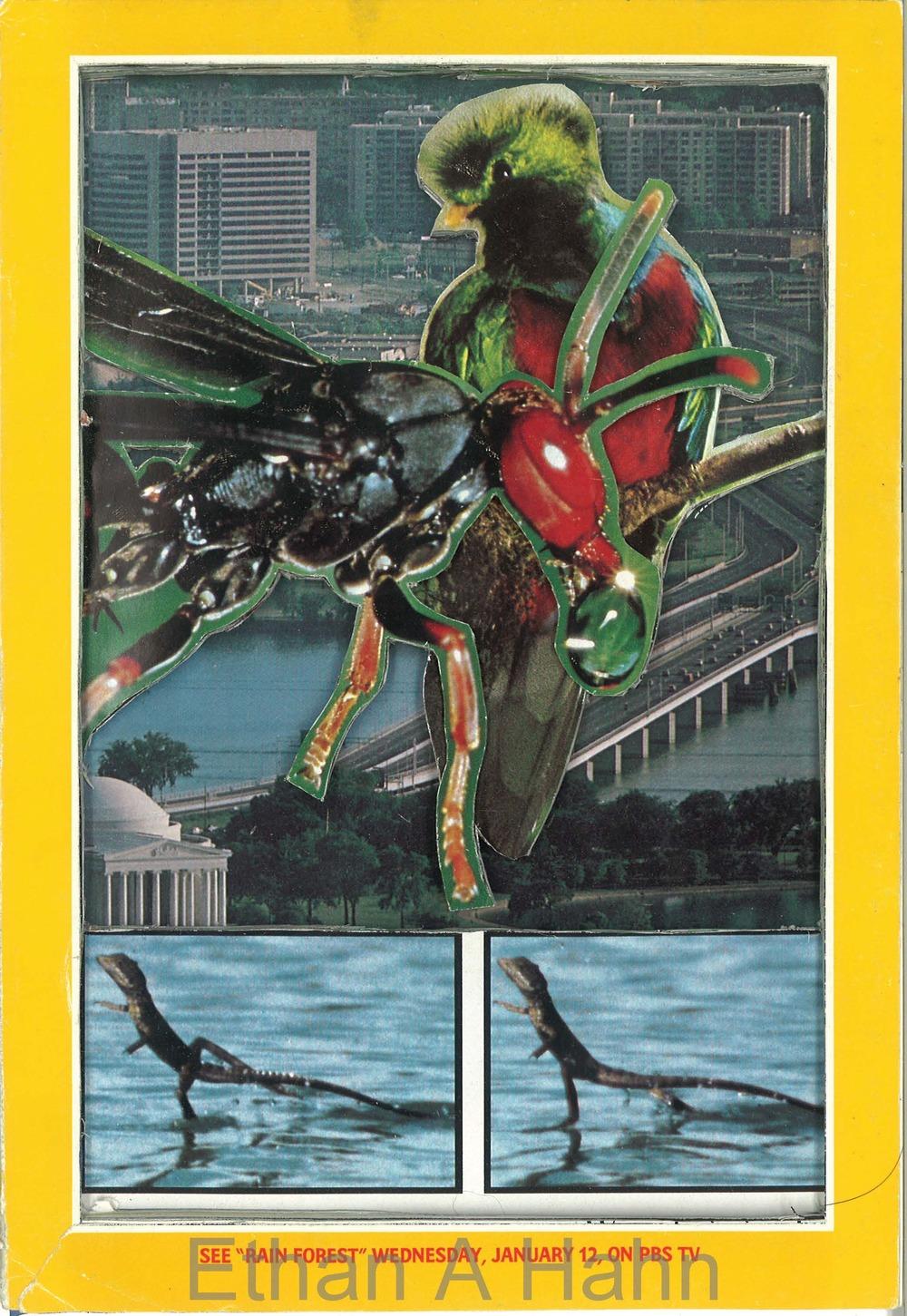 1983 Jan #2