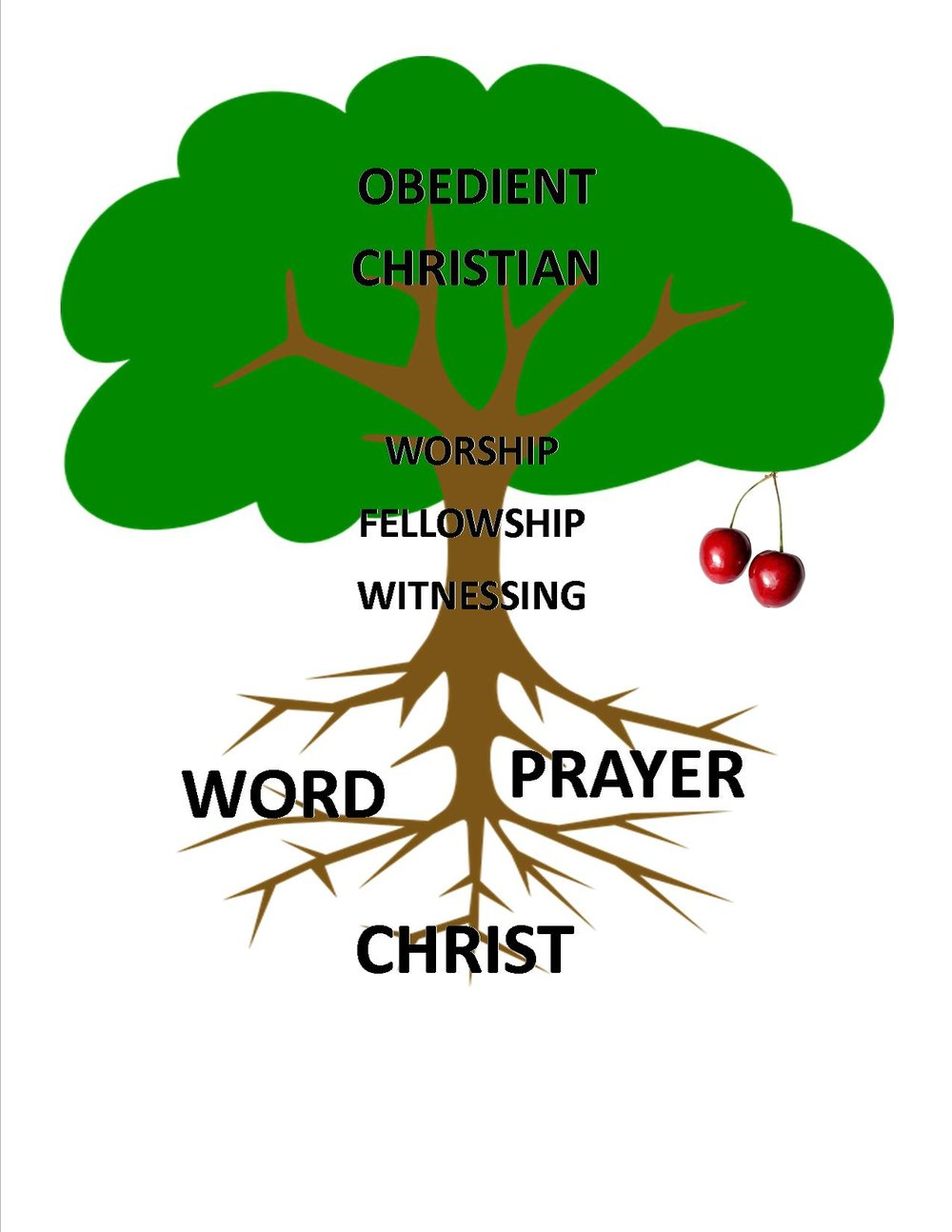 Rooted in Christ, fed by the Word and prayer, and supported by worship, fellowship, and witnessing, the Christian disciple naturally produces fruit as a result of the life flowing out of him/her.