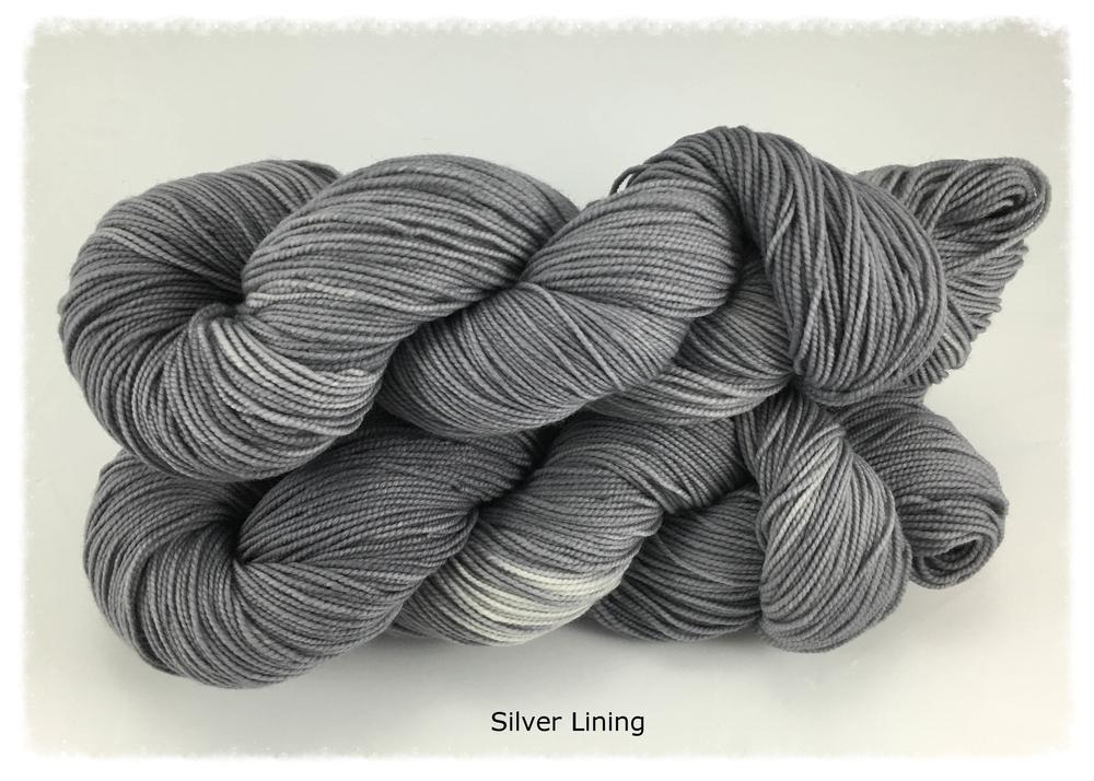 Talon_Silver Lining_group photo 1_Nov 2015.jpg