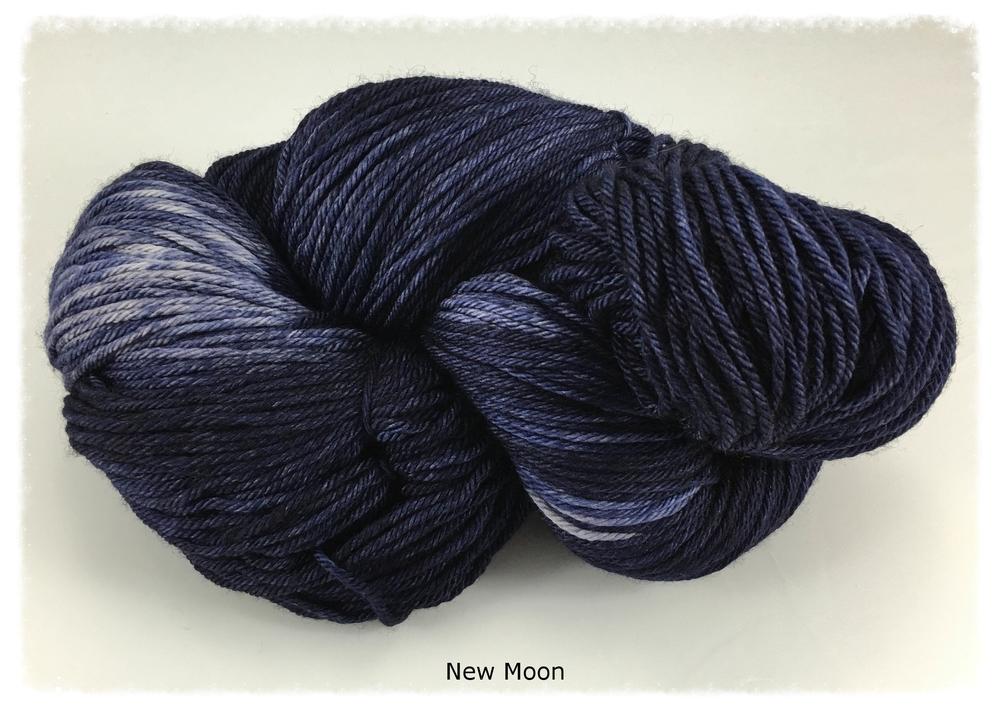 Wyvern_New Moon_group photo 1_Nov 2015.jpg