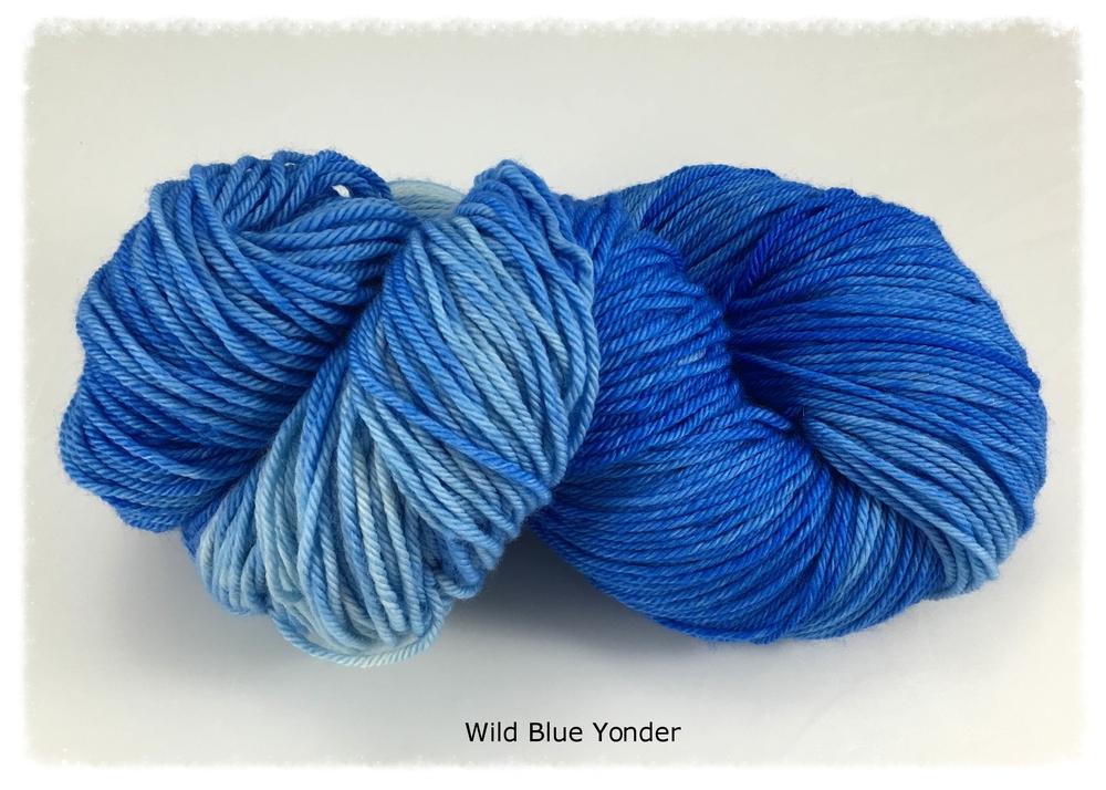 Wyvern_Wild Blue Yonder_group photo 1_Nov 2015.jpg