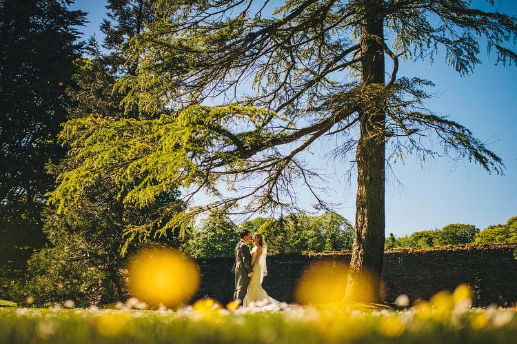 dandelion wedding portrait clandeboye