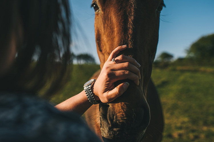 horse engagement portraits