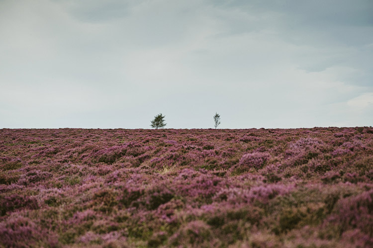 North York moors wedding on Roseberry Topping