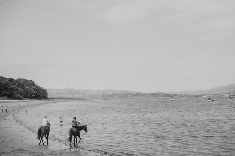 rathmullan horses wedding