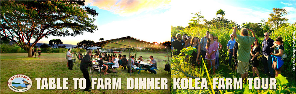 Table-to-Farm-Dinner-1-w.jpg