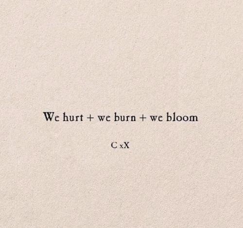 we burn we bloom - Copy.png
