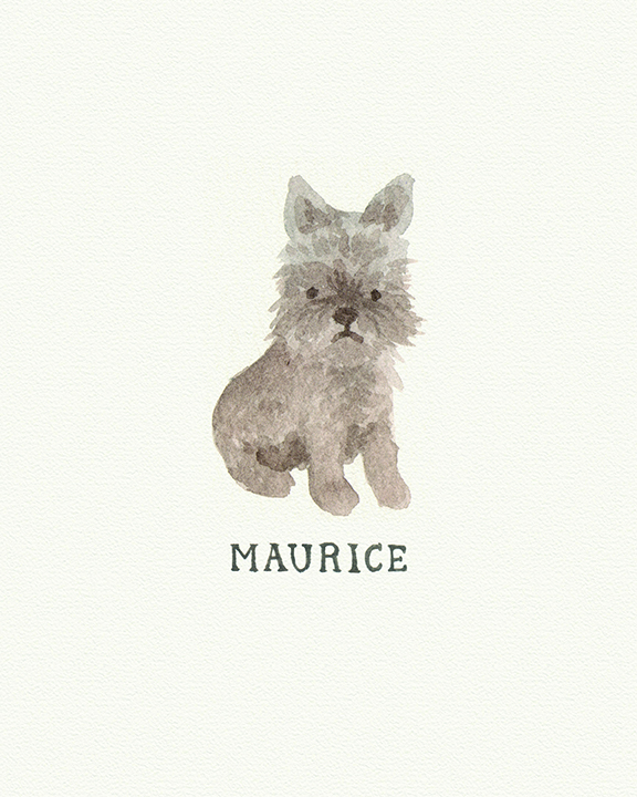 maurice-2.jpg