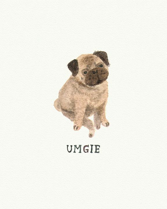 umgie-2-1.jpg