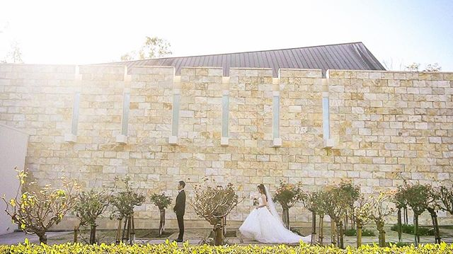 Sneak Peek: Jonathan + Suzie. @jonathan.c.ahn @suzieeee47 #firstlook
