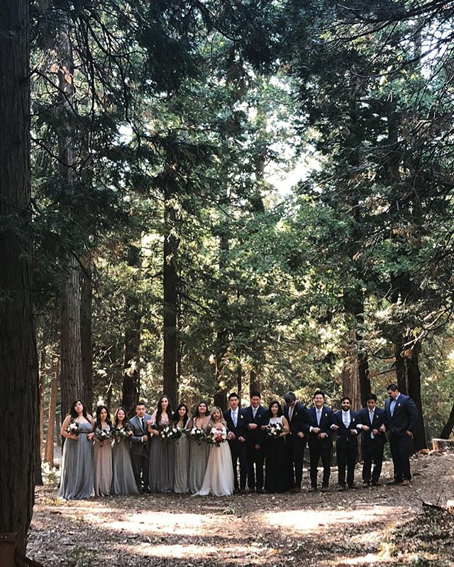 One month ago ❤️ #wedding #onemonthanniversary #bigbear #bigbearwedding #weddingsatpinerose #pineroseweddings #weddingparty #forest #trees #nature #getrichandsasi @sasi_sasquatch @rhchen10 @jamestangphotography