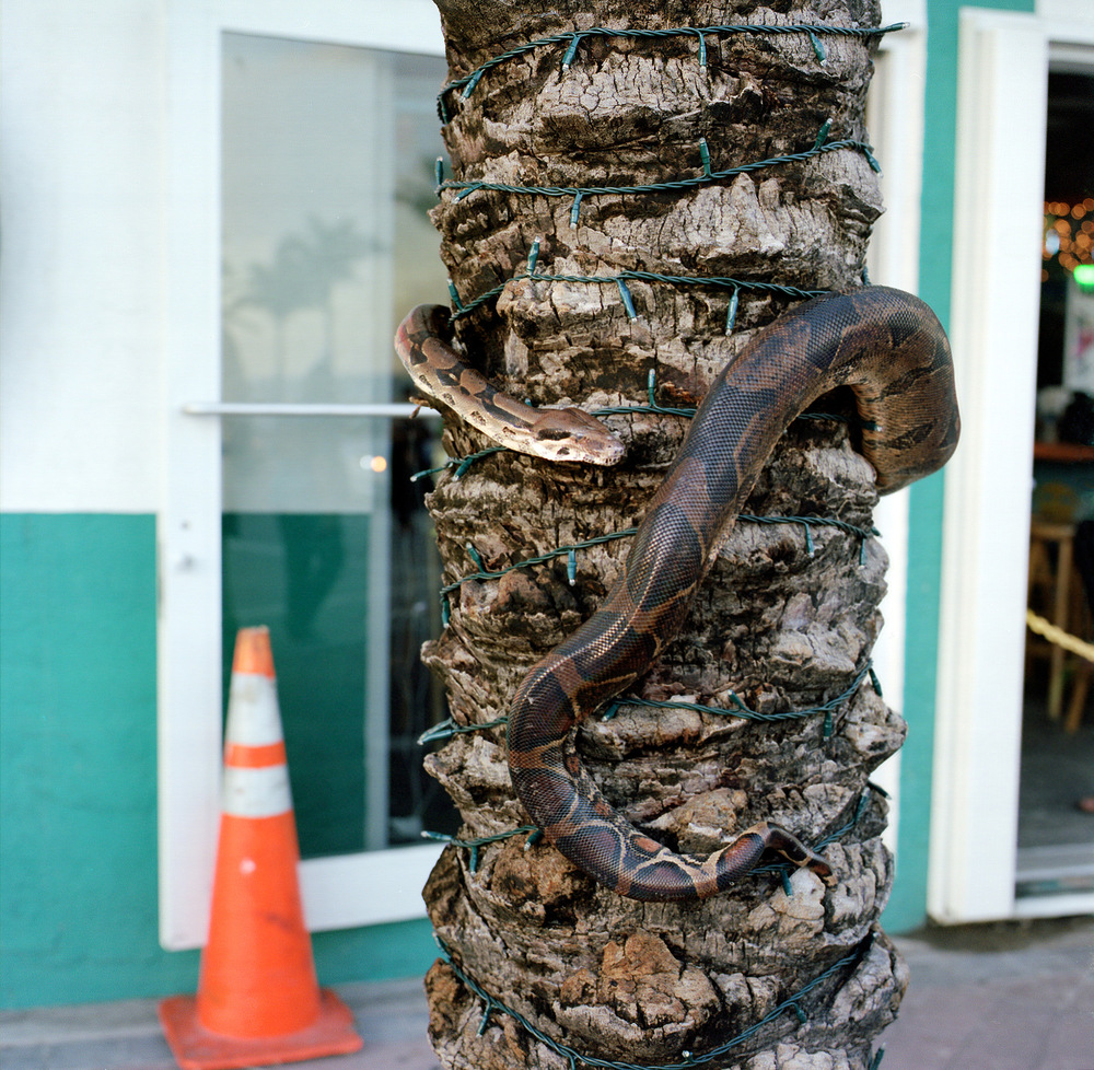 Ft-Lauderdale-5-2013-09.jpg