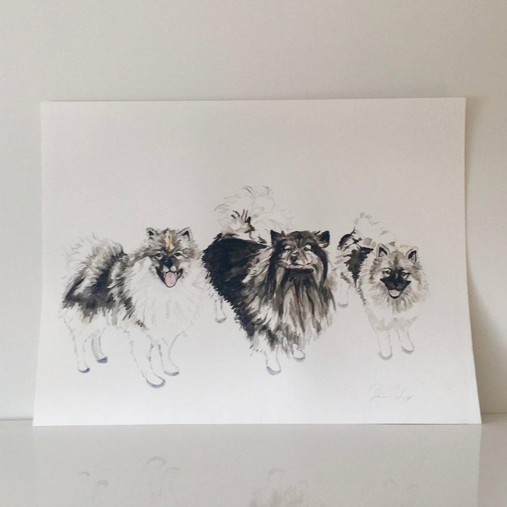 Custom Dog Portrait Watercolor.jpg