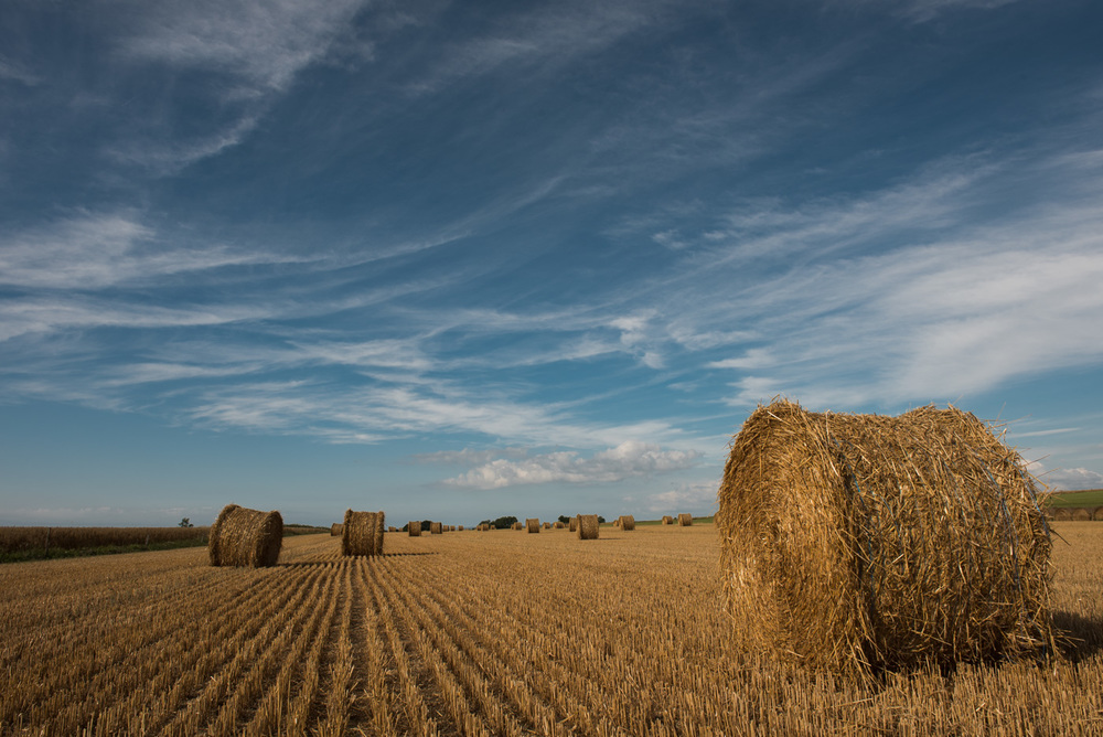 The very countryside view of these hayrolls was another photo opportunity.