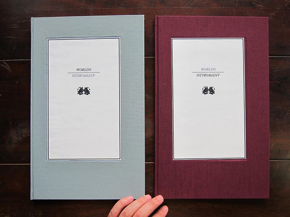 01 Both Books covers w.jpg