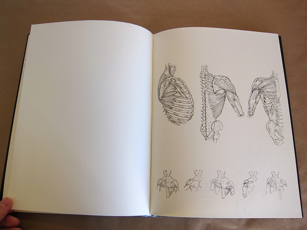13 Book Open w.jpg