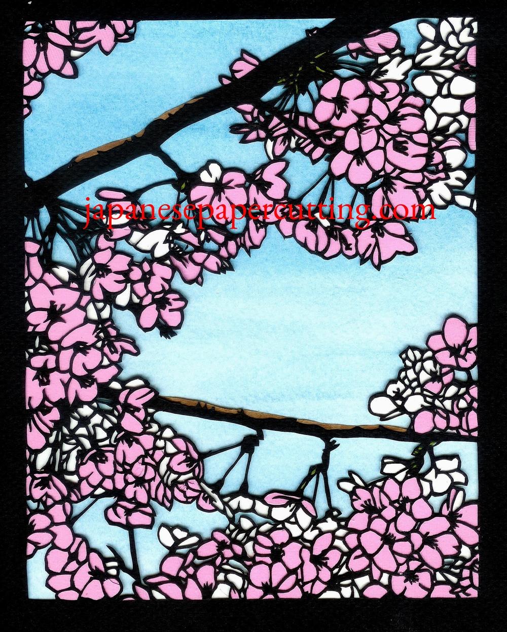 Sakura #1 | 2013