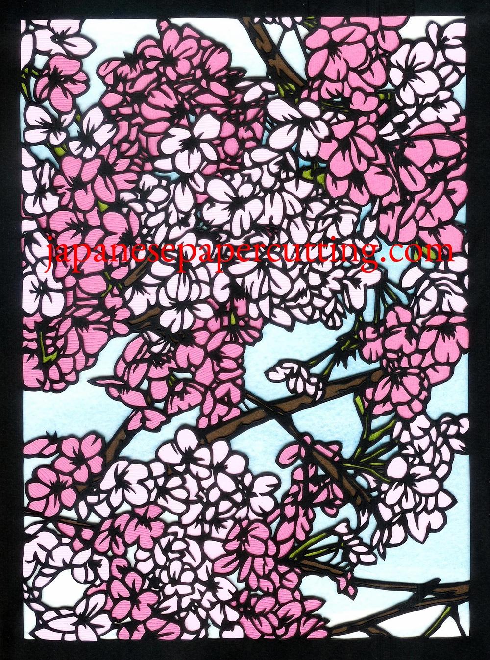 Sakura #3 | 2014