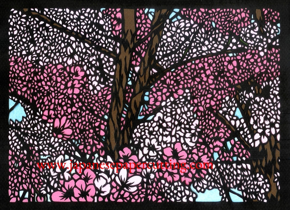 Sakura #6 | 2014