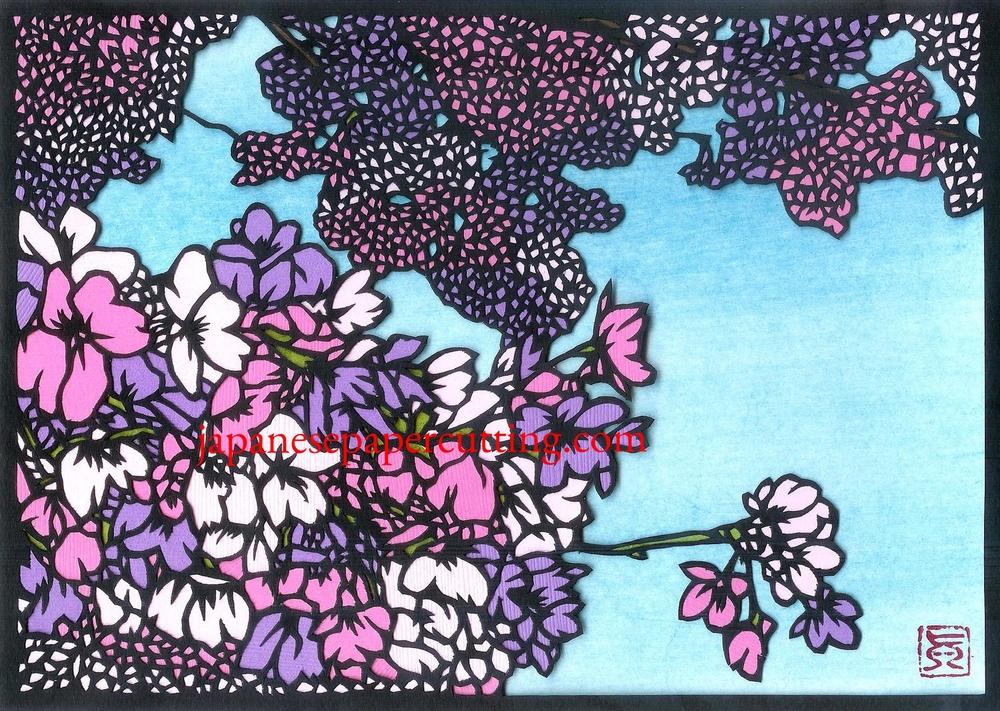 Sakura #10 | 2014