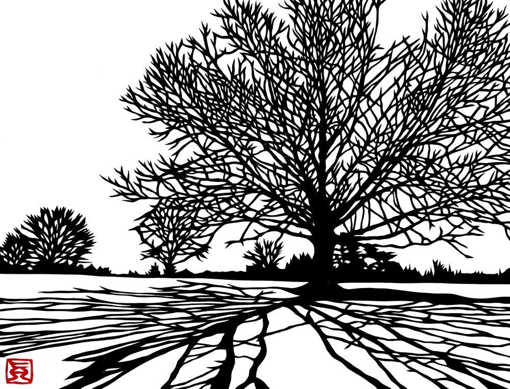 Trees & Shade #9