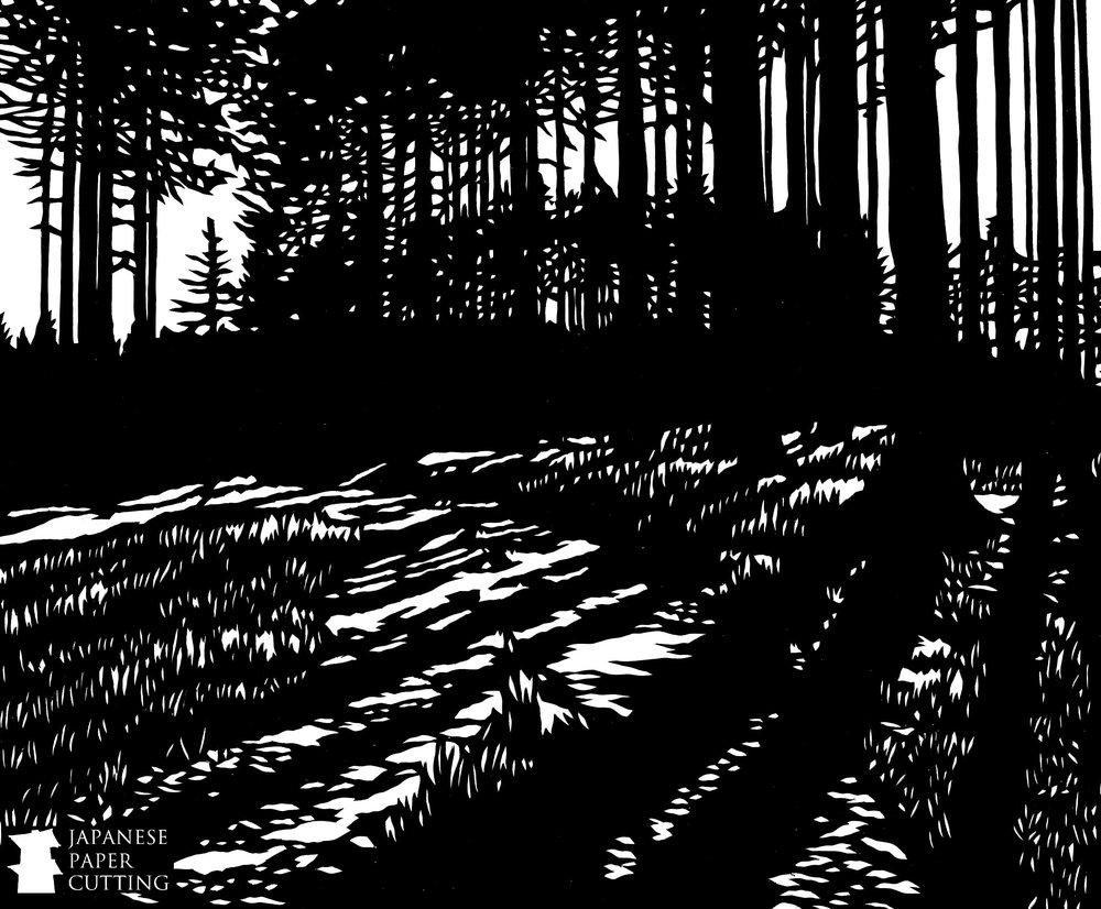 Trees & Shade #2